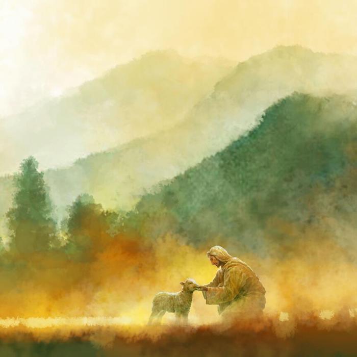 Jesus kneeling with one lamb